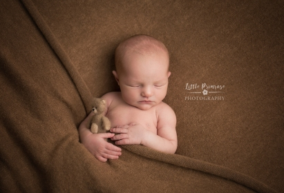newborn baby photographer - Sandbach, Cheshire - sleepy baby boy, teddy, tucked in