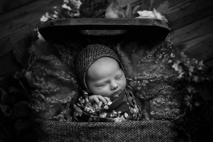 Luna_newborn--8