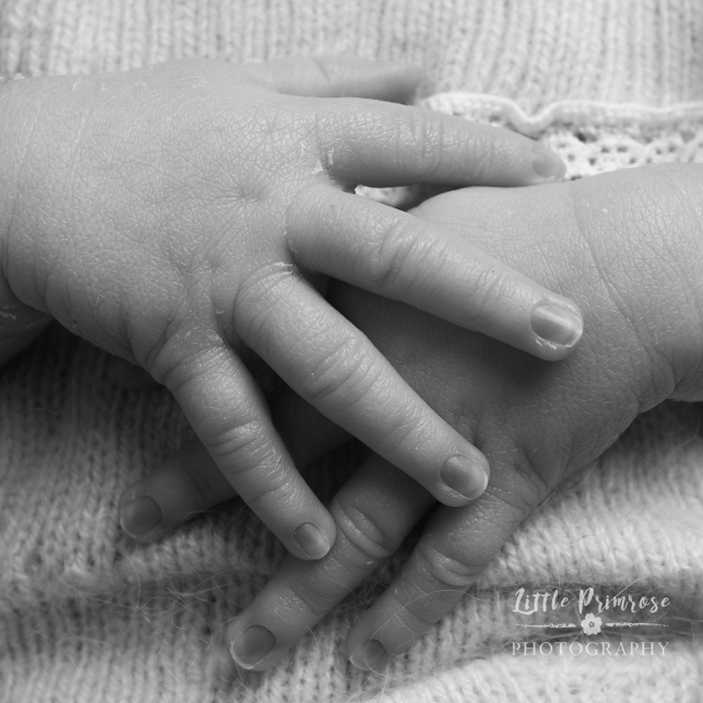 Newborn photography Capturing the details - hands