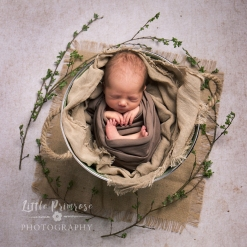 Newborn photography Cheshire Spring baby with blossom
