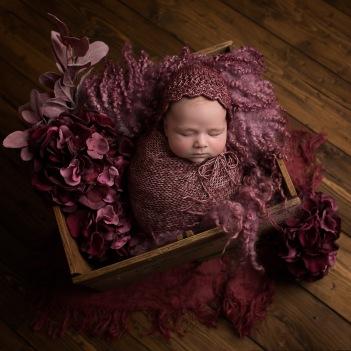 Willow_Newborn (6 of 14)