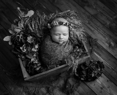 Willow_Newborn (8 of 14)