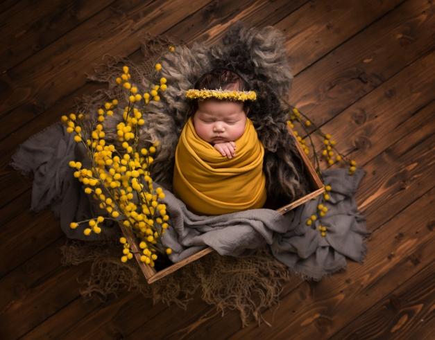 Elia_Newborn-2