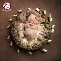 Millicent_newborn