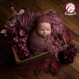 Willow_Newborn (24 of 54)